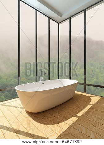Picture of empty room interior with standalone bathtub