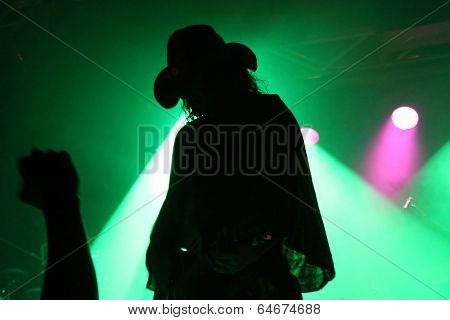 Silhouette of a guitarist on stage with a cowboy hat with fan's fist in front of green reflector