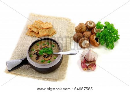 Gourmet Mushrooms Cream Soup