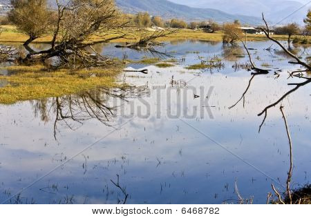 Lake kerkini at north Greece, Macedonia province