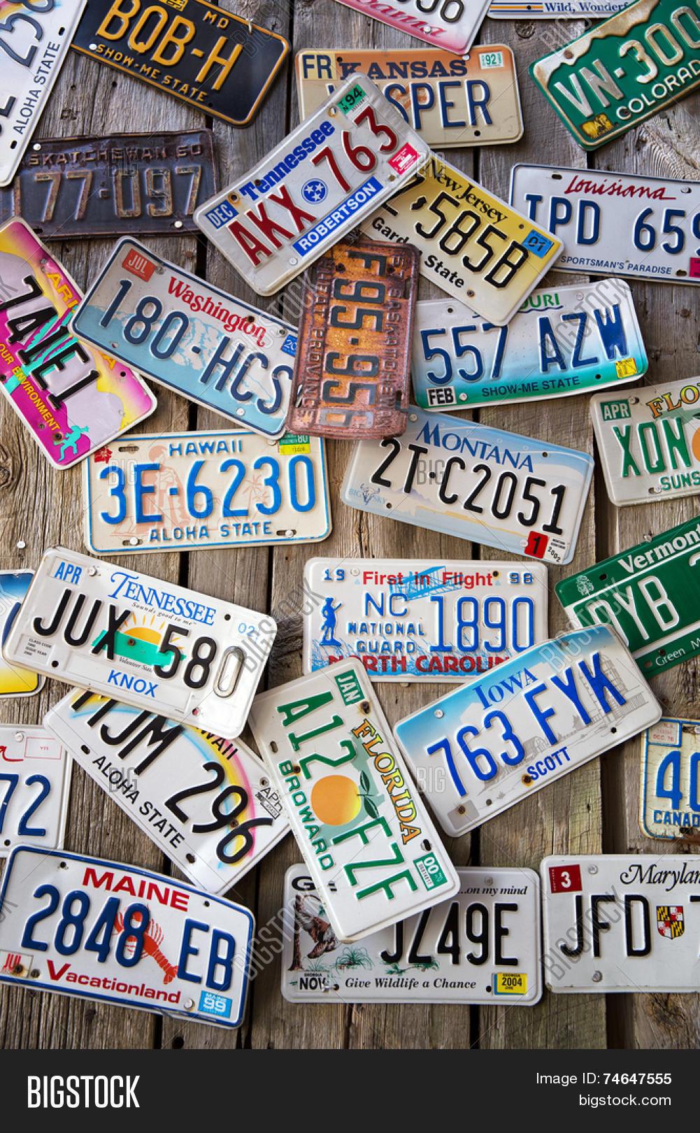 Bike number plate slogans