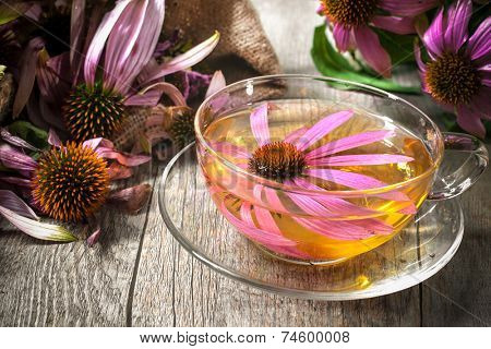 Echinacea purpurea. Cup of echinacea  tea on wooden table