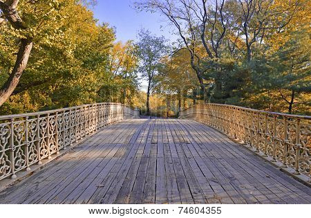 Autumn Color: Fall Foliage in Central Park, Manhattan New York