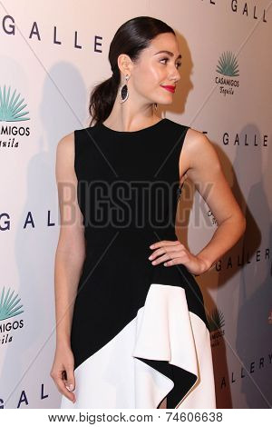 LOS ANGELES - OCT 23:  Emmy Rossum at the De Re Gallery & Casamigos Host The Opening Brian Bowen Smith's