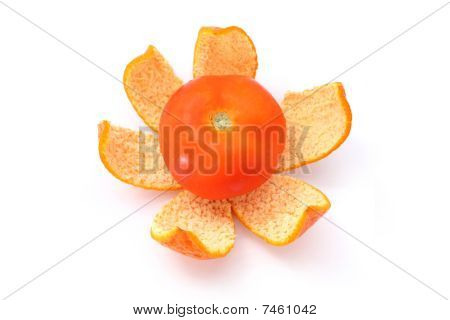 Tomato On Orange Peel
