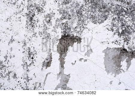 White Mortar Wall Texture.