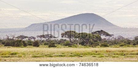 Kilimanjaro Flank Crater