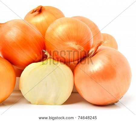 Yellow Golden Onion