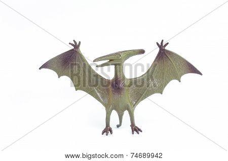 Pterosaurs dinosaur toy isolated on white