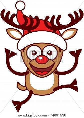 Xmas reindeer with big antlers, jumping and wearing a Santa hat
