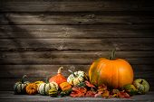 picture of foliage  - Thanksgiving day autumnal still life with pumpkins on old wooden - JPG