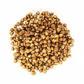 picture of buckwheat  - Buckwheat in closeup - JPG