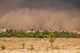 picture of sandstorms  - Sandstorm in the city in the background Gafsa Tunisia Africa
