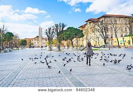 The Girl And Pigeons