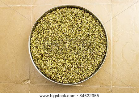 Coriander seeds kept for a plate for drying