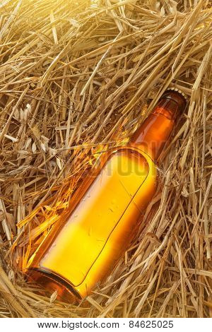 Beer bottle in the stack of hay. Without label