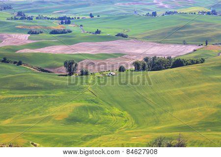 Rolling hills in Washington state near Spokane