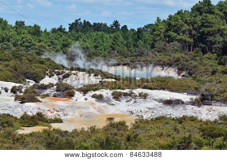 Pacific-nz-new-zealand-north-island-wai-o-tapu-geothermal-wonderland