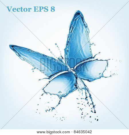 water butterfly, vector illustration EPS 8.