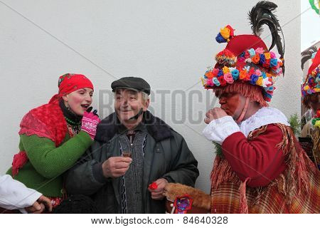 VITANOV, CZECH REPUBLIC - JANUARY 26, 2013: People attend the Masopust Carnival, a traditional ceremonial Shrovetide door-to-door procession in Vitanov near Pardubice, Czech Republic.