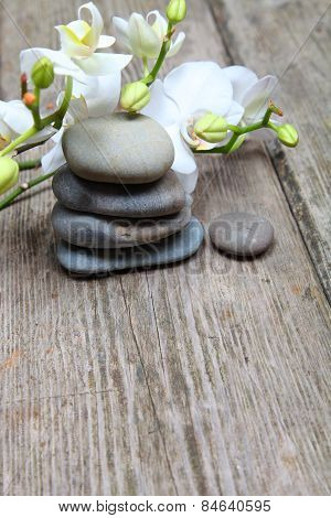 Zen Stones And Orchid