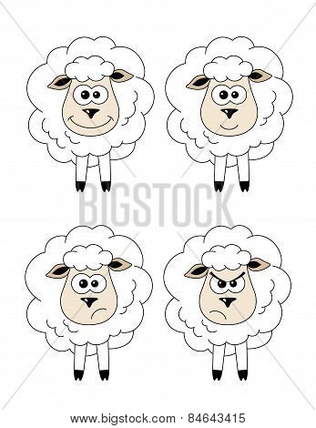Set Of Sheep