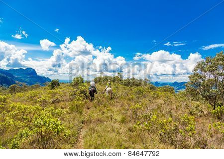 People riding horses in a beautiful scenery