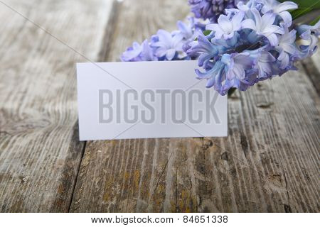 Blue Hyacinths And Greeting Card