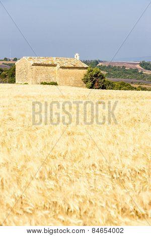 chapel with grain field near Entrevennes, Plateau de Valensole, Provence, France