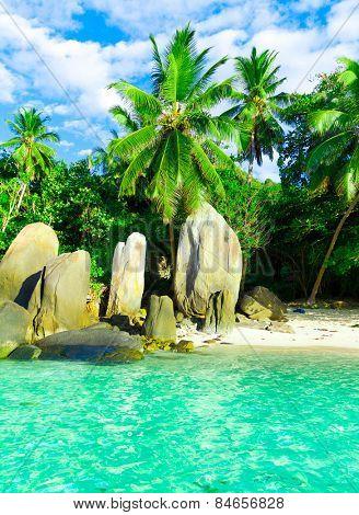 Beach Getaway Paradise