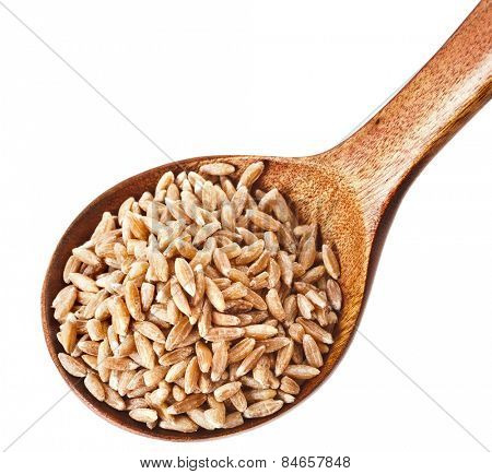 Portion of grains spelt in spoon top view close up isolated on pure white background