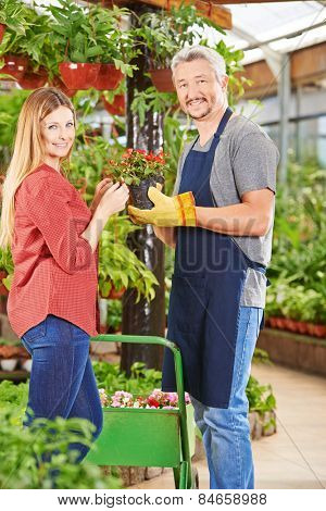 Customer and salesman in nursery shop with a begonia flower