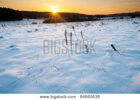 Winter Field Landscape At Sunset