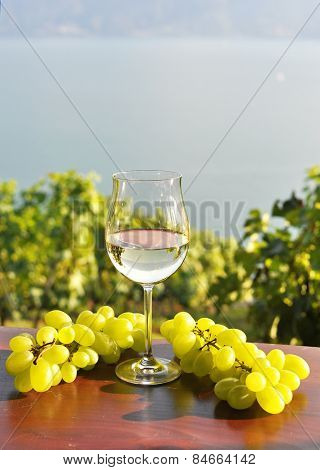 Wine ad grapes. Lavaux, Switzerland