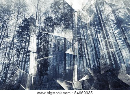 Abstract Surreal Forest Background. Blue Toned Photo Collage