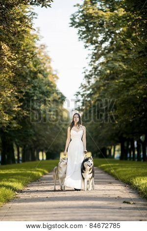 Girl In  White Dress Walks With Two Husky Dogs. Summer.