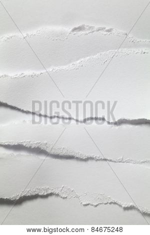 White Paper Torn