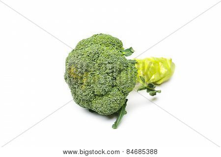 Brocoli On A White Background