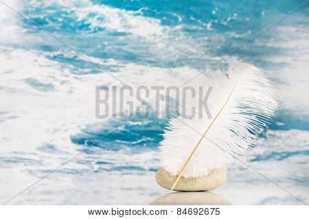 White feather on a blue turquoise background for literature concepts.