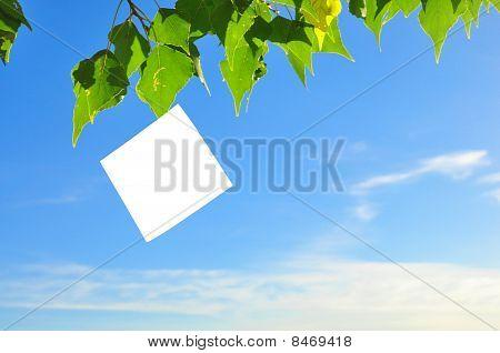 Paper Fluttering In The Wind