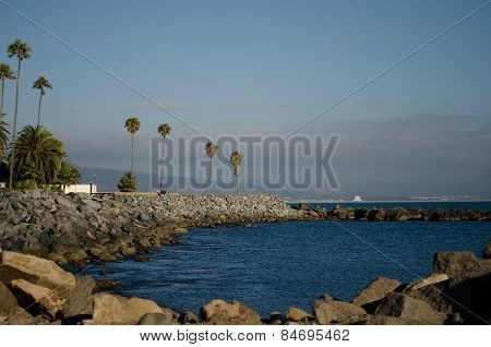 View of a breakwater with piled rocks and palm trees in Ensenada, Baja California, Mexico