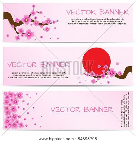 Spring Banner with Blooming Sakura