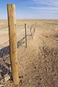 picture of sheep-dog  - Dingoe fence in the Australian Outback - JPG