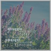 picture of strength  - Quote  - JPG