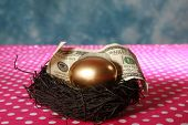 stock photo of laying eggs  - Nest Egg. A Solid 24K Golden Egg lays in a Black Bird Nest with a Genuine 100 Dollar bill. Represents Retirement savings, Saving for a Rainy Day, Savings account, 401K, Banking, Finance business - JPG