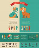 stock photo of domestic cat  - Cat infographics with vector icons set and elements - JPG