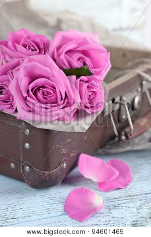 Beautiful pink roses in suitcase, closeup