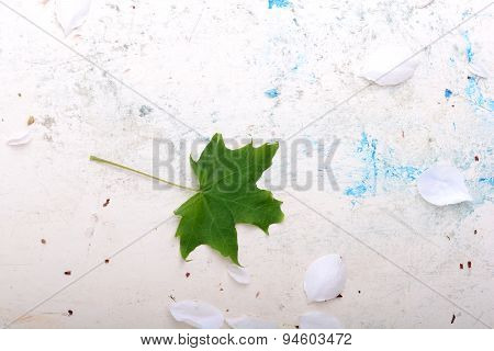 Ornate Floral Background And Green Leaf