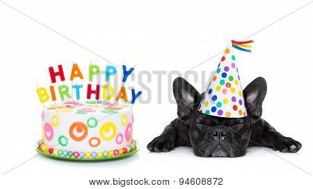 Happy Birthday Sleeping Dog