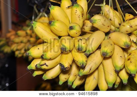 Banana fruit for sale in the market